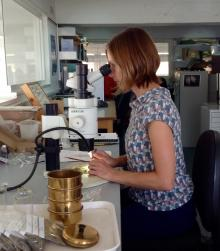 Unexpected Treasures: Archaeology and Botany - A talk by Ruth Pelling